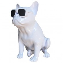 Bluetooth-колонка Aerobull BIG DOG S4, c функцией speakerphone, радио
