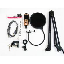 Конденсаторный микрофон студийный M-900USB